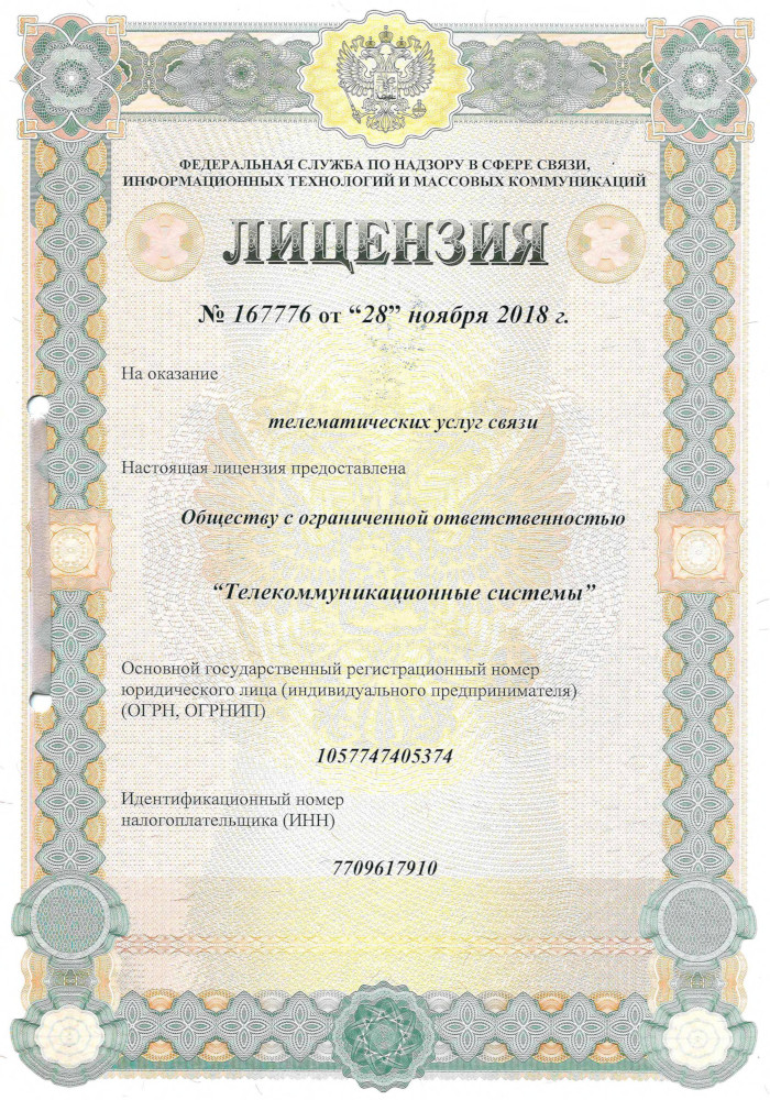 Лицензия на телематические услуги связи от 28 ноября 2018 г.